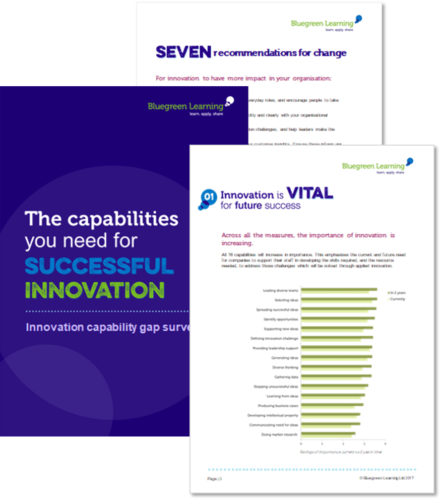innovation capability report